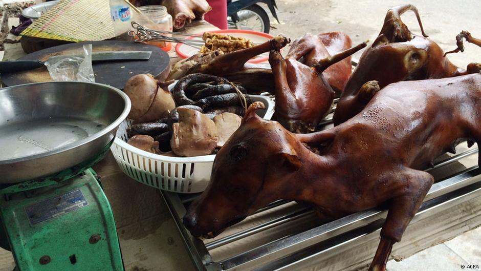 1-vijetnamski-psi-kao-pecenje